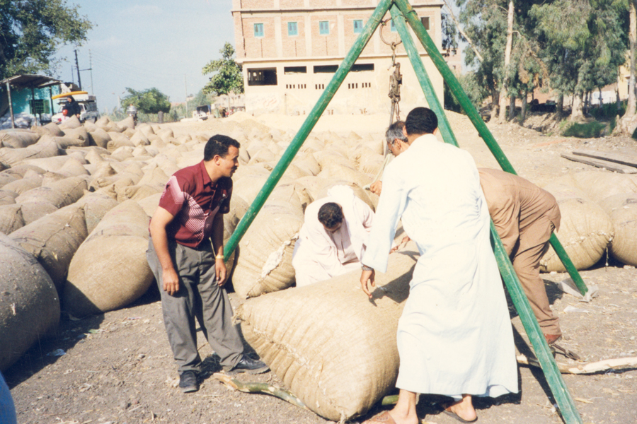 Photo of a men moving bags of cotton.
